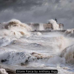 Storm Force by Anthony Rigg