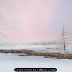 A Hard Winter by Kathryn Scorah