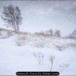 Rannoch Snow by Adrian Lines
