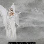 Angel of the storm by Pam Sherrin