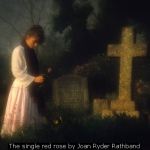 The single red rose by Joan Ryder Rathband