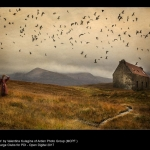 17175_Valentina Kulagina_Bird Storm