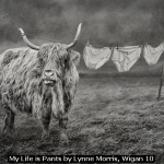My Life is Pants by Lynne Morris, Wigan 10