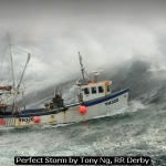 Perfect Storm by Tony Ng, RR Derby