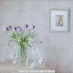 Tulips by Gavin Forrest, Carluke