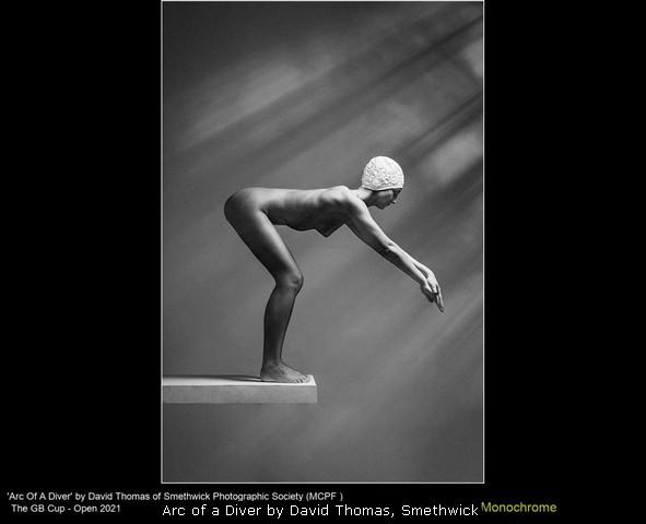 Arc of a Diver by David Thomas, Smethwick