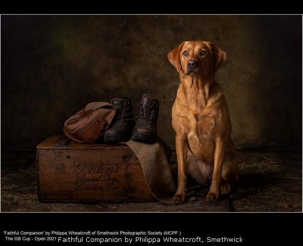 Faithful Companion by Philippa Wheatcroft, Smethwick