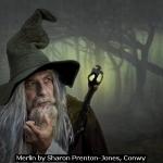 Merlin by Sharon Prenton-Jones, Conwy