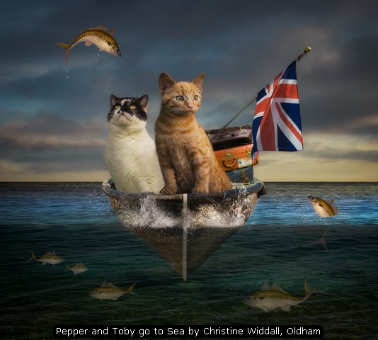 Pepper and Toby go to Sea by Christine Widdall, Oldham