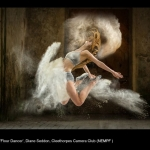 14439_Diane Seddon_Flour Dancer