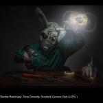 15033_Terry Donnelly_Dentist Rabbit