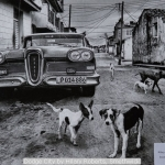 Dodge City by Hilary Roberts, Smethwick