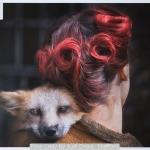 Foxy Lady by Judi Dicks, Stafford