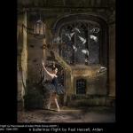 A Ballerinas Flight by Paul Hassell, Arden