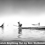 Catch Anything Yet by Ann McDonald, Chichester