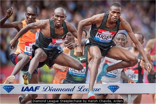 Diamond League Steeplechase by Harish Chavda, Arden