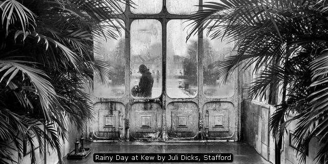 Rainy Day at Kew by Juli Dicks, Stafford