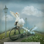 A Wild Goose Chase by Lynne Morris, Wigan 10