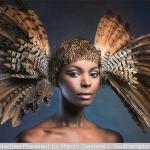 Startled Pheasant by Marcin Ciesielski, Southampton