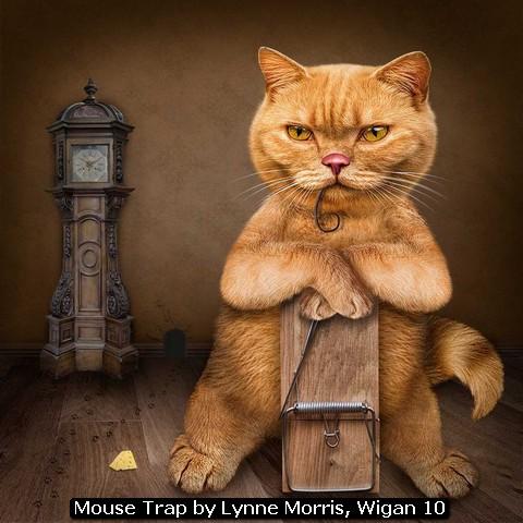 Mouse Trap by Lynne Morris, Wigan 10