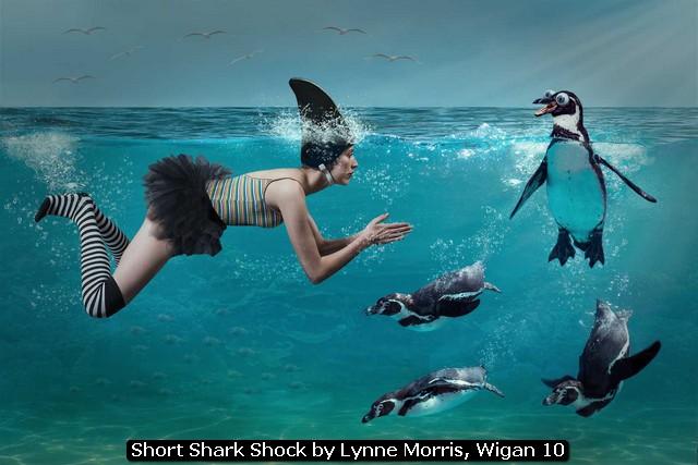 Short Shark Shock by Lynne Morris, Wigan 10