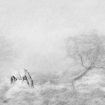 Winter's Hardship, Hazel Marr FRPS MPAGB (SPF)
