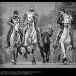 Bull Run by Adrian Lines, LCPU