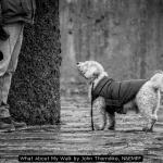 What About My Walk by John Thorndike, NEMPF
