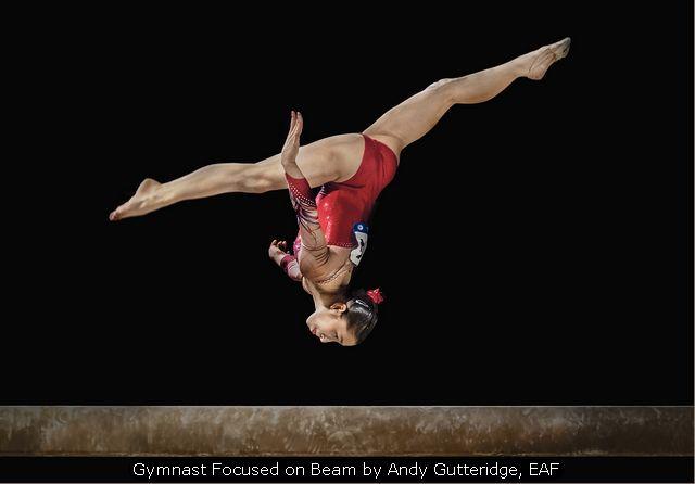 Gymnast Focused on Beam by Andy Gutteridge, EAF