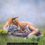 Fox with a Butterfly by Lynda Haney, LCPU