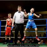 Winner takes it All by Mark Marlow, NIPA