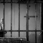 Lockdown by Anne Greiner