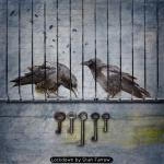 Lockdown by Stan Farrow.