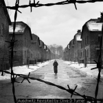 Auschwitz Revisited by Clive D Turner