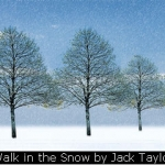 Walk in the Snow by Jack Taylor