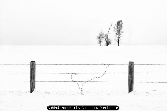Behind the Wire by Jane Lee, Dorchester
