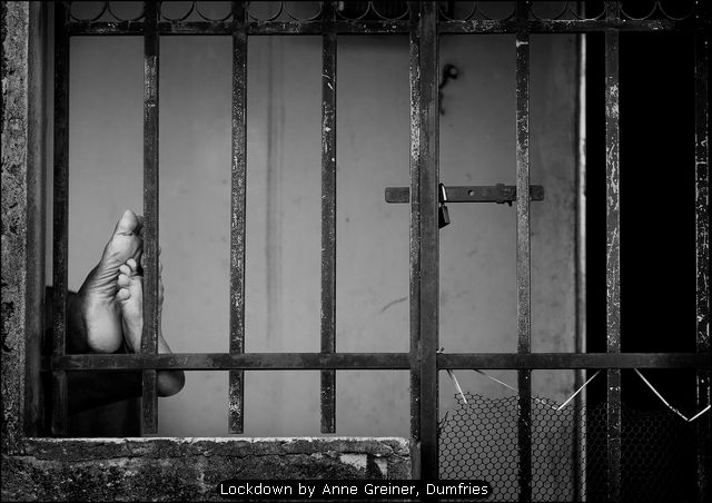 Lockdown by Anne Greiner, Dumfries